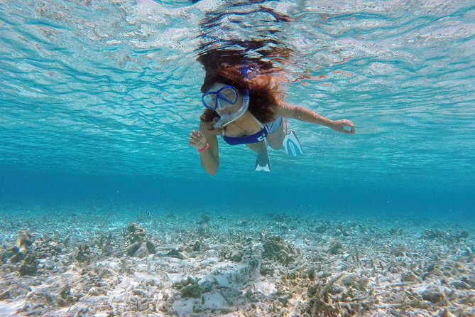 Are you ready to explore a wonderland of marine-life with our friendly tour guide? We make sure you take a memorable experience with you. Even non-swimmers can go snorkeling with us.