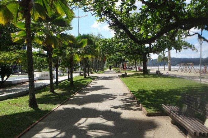 Santos: Una Visión General - Atracciones más populares en 7 horas (Grupo compartido), Santos, BRASIL