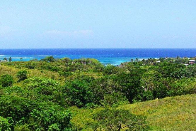 Shore Excursion: Roatan East End Sightseeing Tour, Roatan, HONDURAS