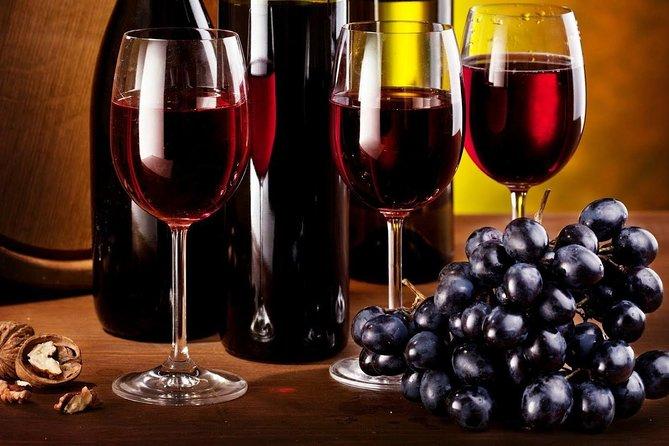 Navarra Wineries Tour, Pamplona, ESPAÑA