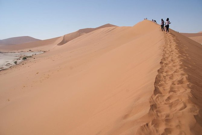 This tour provides the best and fascinating dune experience in the Sossusvlei found in Namibia<br>ensuring a true journey of discovery. Explore the Namibian land with stunning landscapes, endless<br>skies, barren deserts, rugged mountains and spectacular wildlife