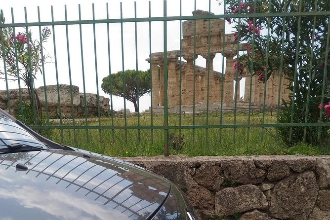 Tour Paestum Temples+Guided visit Mozzarella di Bufala Farm +Wine tasting in Cilento National Park, ,