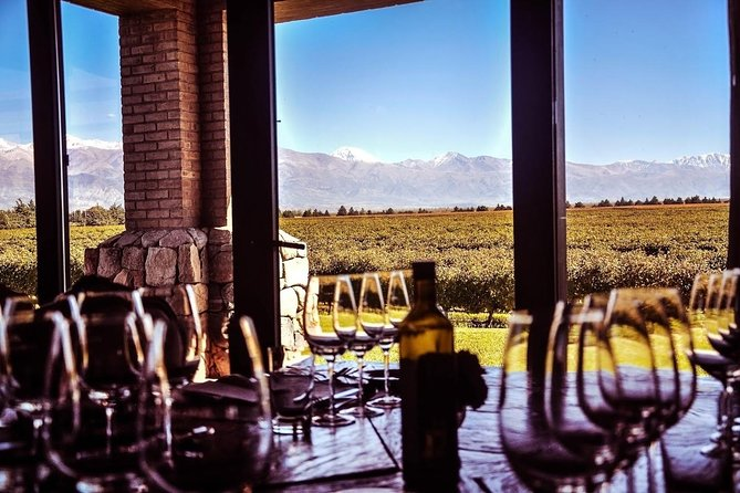Mendoza wine tour. Visit 3 wineries and enjoy gourmet lunch, Mendoza, ARGENTINA