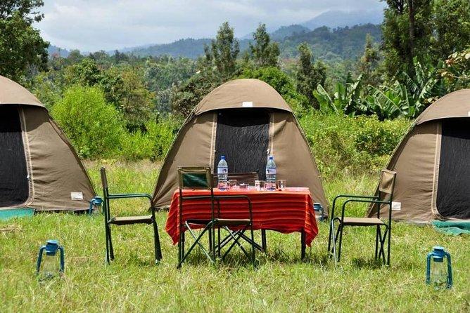 2 Days Livingstone Chobe Package, Cataratas Victoria, ZIMBABUE