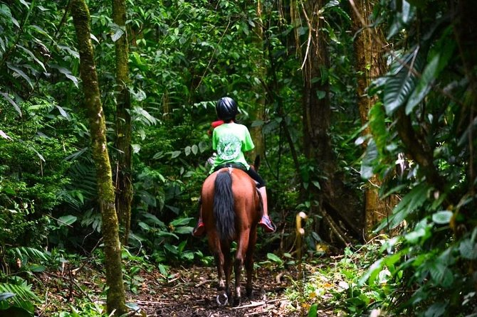 Horseback Riding to the Volcano at Arenal Wilberth Stable, ,