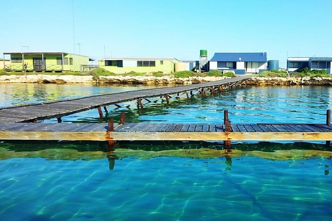 The Abrolhos Islands is steeped in History and has some of the worlds best fishing, including the famous West Australian Rock Lobster. Our charters are fully catered with all meals, fishing gear, accommodation on board the vessel, plus we are the only charter company to include mini bus transfer to and from Geraldton departing from Hillarys marina (Perth)
