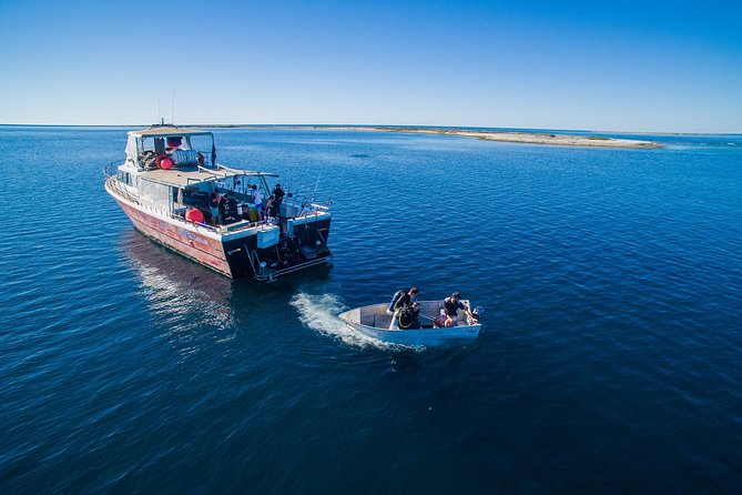 The Abrolhos Islands is steeped in Maritime history and has some of the worlds best fishing, including the famous West Australian Rock Lobster. Our charters are fully catered with all meals, fishing gear, accommodation on board the vessel, plus we are the only charter company to include mini bus transfer to and from Geraldton departing from Hillarys marina (Perth)
