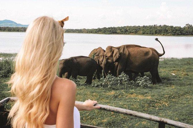 7 Nights Private Tour Of Sri Lanka, Anuradhapura, Sri Lanka