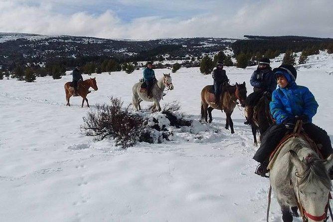 MÁS FOTOS, Horseback Riding Full Day with Asado in San Carlos de Bariloche, Argentina