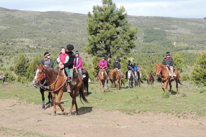 """In the guided ride you can see the """"Las buitreras"""" and """"Carbón"""" hills, the Ñirihuau river valley and a wide mountain range of the Andes Mountains. A pleasant walk of approximately two hours, crossing a great mallín and a mixed forest of ñires, we challenge piche stick, radales etc. Attended by its owners"""