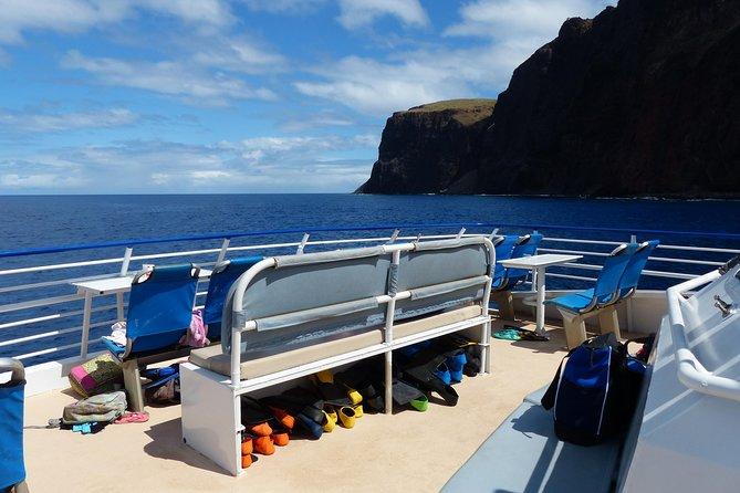 Encuentro con delfines y aventura de buceo desde Lahaina a Lanai, Maui, HI, ESTADOS UNIDOS