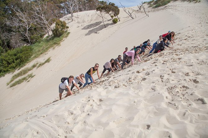 6-Day Tasmanian Explorer Adventure Tour from Hobart, Hobart, AUSTRALIA