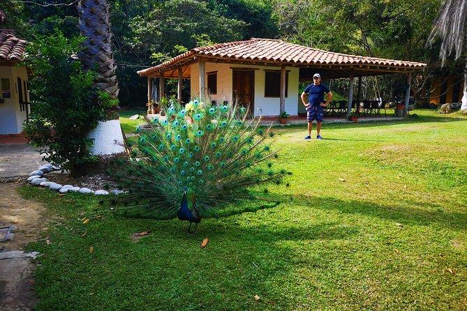 Tour Privado - Cascadas de Juan Curí (Naturaleza), Bucaramanga, COLOMBIA