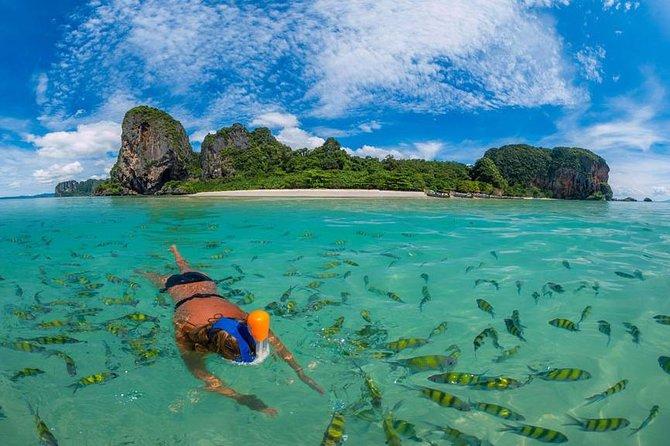 MÁS FOTOS, Phi Phi and Bamboo Islands Snorkeling Premium Service Trip From Khao Lak