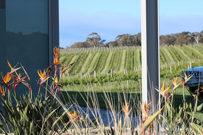 Margaret River Wine and Sights Discovery Tour from Busselton or Dunsborough, Busselton, AUSTRALIA