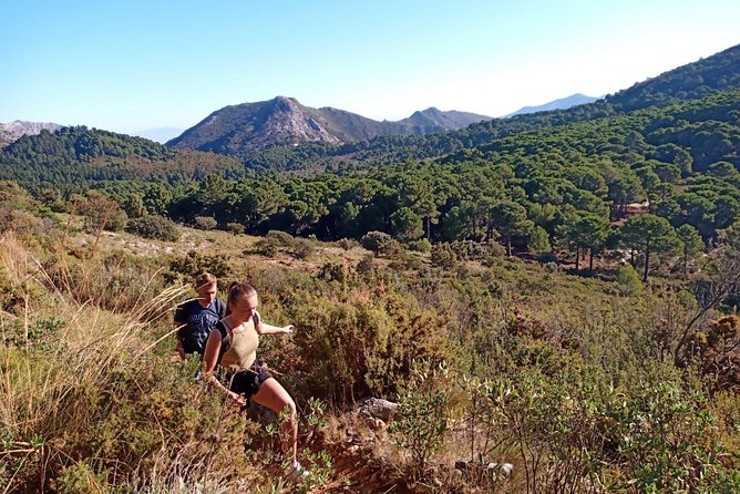Disconnect with office hours and the daily commute. Instead, pull on some well-worn hiking boots and come and explore the fantastic terrain of Andalucia. Stepping out of your comfort zone will reward you with amazing places and new discoveries.