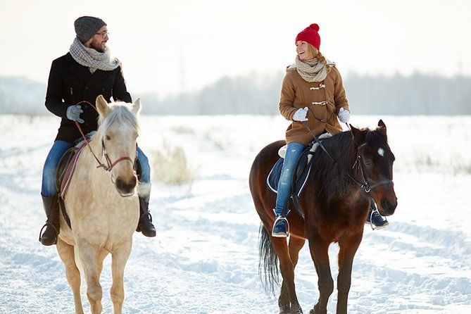 Join us on Winter Horse riding in Bled and explore lake Bled & Triglav National Park.<br>Winter Horse riding cross the countryside around Bled, Pokljuka, the wonderful Radovna Valley and the eastern part of Triglav National Park packed with snow is excellent winter activity for beginners, Families as well as for experienced riders. After introduction in the manege even beginners can ride our friendly and well trained Lipizzaner horses into the great outdoors.<br>Our Winter Horse riding tours with an experienced guide are diverse, from short ascends to lower hills (Senožeta) with the most beautiful view of the winter lake Bled, discovering most charming paths through the woods to a whole day ride through the pristine landscape of Triglav National Park.