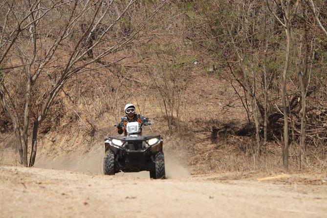 Combo - Jungle ATV Tour + Jungle Horseback Riding Tour, Bucerias, MEXICO