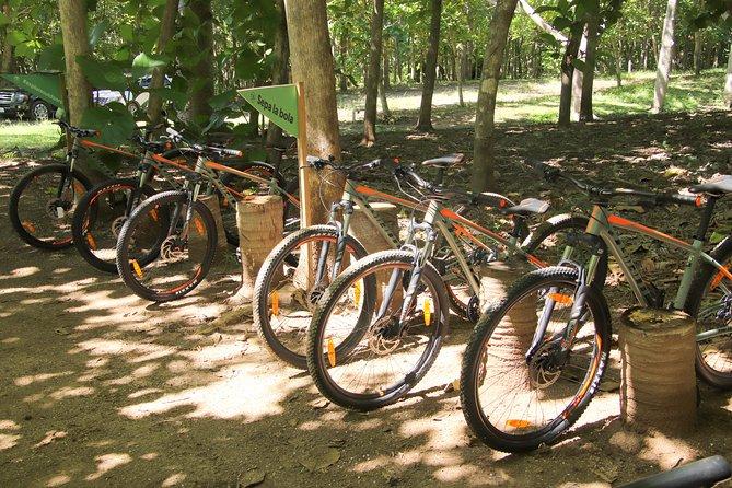 ATV Tour Single Rider plus Biking tour, Bucerias, MEXICO