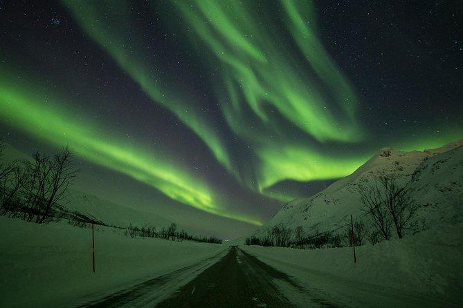 Northern Lights Tour from Tromsø, Tromso, NORUEGA