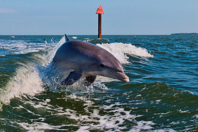 Private Boat Tour On Funship (Up to 10 Passengers) - Indian Rocks Beach, Clearwater, FL, ESTADOS UNIDOS