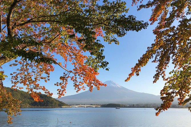1 Day Charter Tour to Mt Fuji View, Tokyo, JAPON