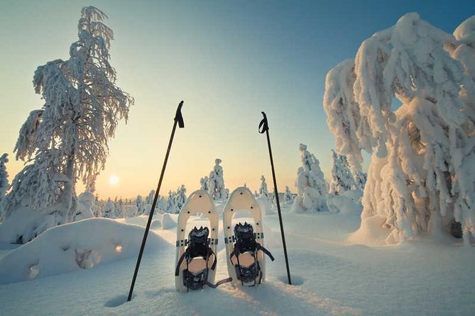 Taking part of this artic experience and you won't regret it.<br><br>walking, taking pictures and listening to the guide is the perfect mix to get the a taste of this place.