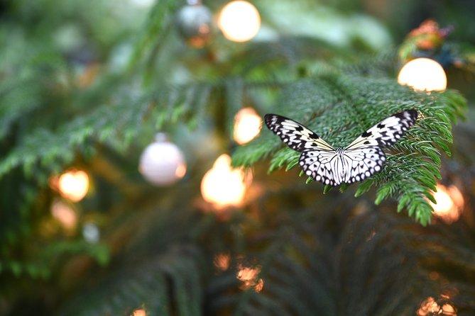 Entrada al centro de mariposas Cockrell en Houston, Houston, TX, ESTADOS UNIDOS
