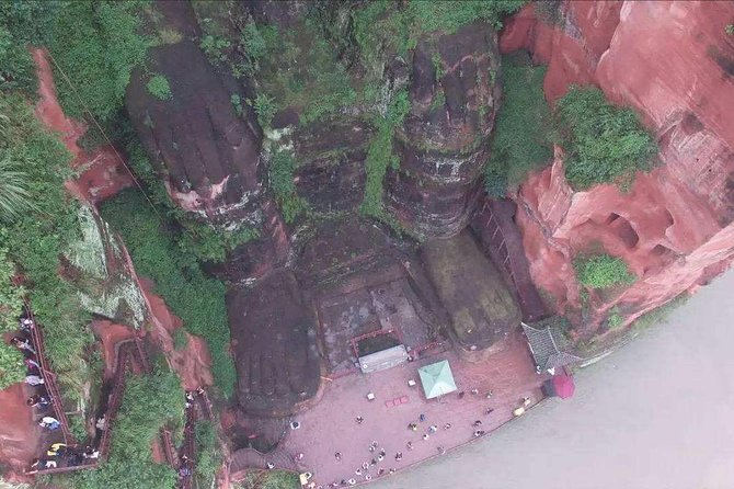 One Day Trip to Chengdu Panda Base and Leshan Buddha Tour, Chengdu, CHINA