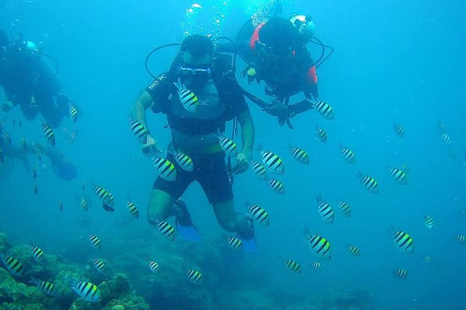 Diving in Havelock is exceptional. We pride ourselves in our personal care. We guarantee small group packages in a very relaxing atmosphere.All of our diving instructors are experienced, highly trained to make diving fun and thrilling.