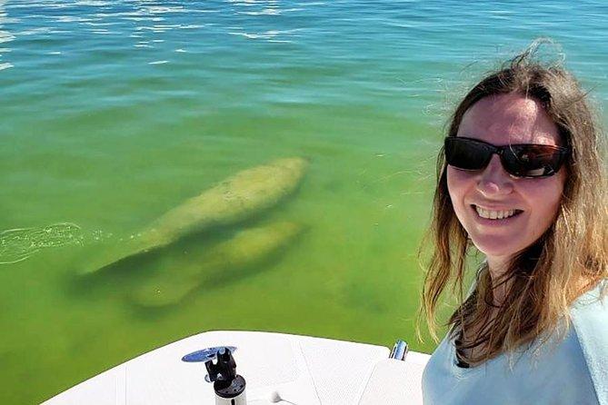 10,000 Islands Eco-Tour - Dolphins, Mangroves, Birding and More!, Naples, FL, ESTADOS UNIDOS