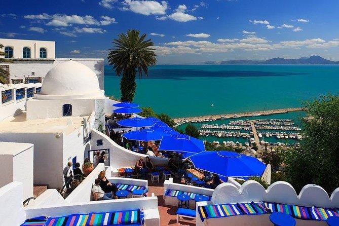 Visita guiada de medio día por Cartago y Sidi Bou Said, Tunez, TUNEZ