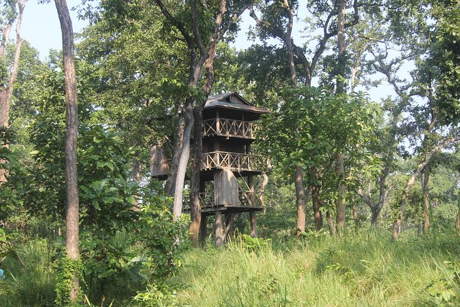 Dreamt about sleeping inside Jungle ? Here we make your dream come true . The jungle tower are wooden tower built inside the jungle. Well maintained by basis bedrooms , toilets , lights, where one can enjoy amazing experience . 24 hour support from the guide and ranger who will be in same tower . Birds chirping , dears grazing , rhino galloping , tigers roaring are the basis things you can expect during your tower night stay .