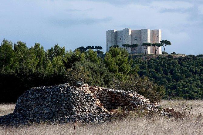 COMBO OFFER: 3 PRIVATE WALKING TOUR UNESCO (MATERA ALBEROBELLO CASTEL DEL MONTE), Alberobello y Locorotondo, ITALIA