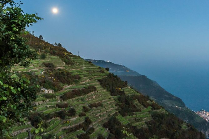 Hiking in the moonlight, Cinque Terre, Itália