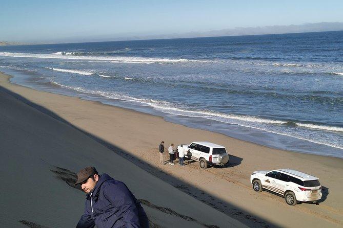 Half Day 4x4 Sandwich Dune Tour, Walvis Bay, NAMIBIA