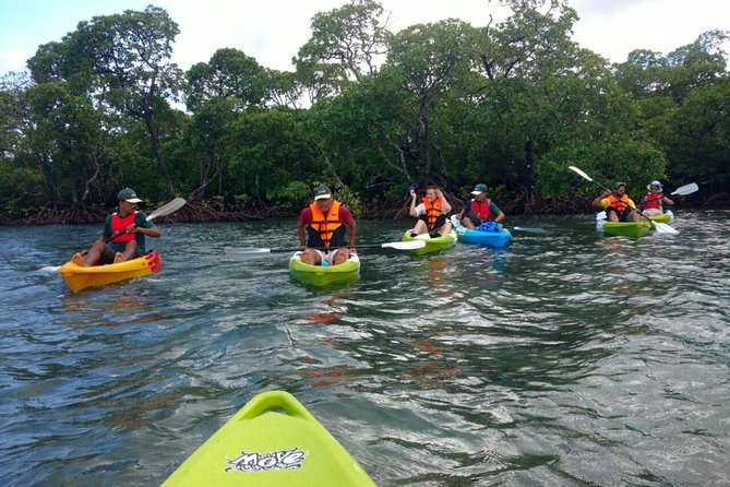 The Andaman Sea, near Havelock Island, is one of the best places to go kayaking. The natural delights and scenery of the islands appear even more stunning during the night. Less crowded than Port Blair, the island of Havelock disseminates less light pollution, giving a great view of the night sky and the island.