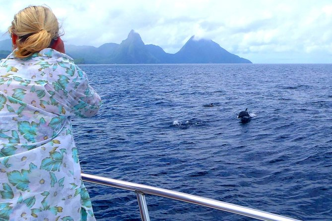 Spot dolphins and whales in St. Lucia's beautiful turquoise waters! Learn about St. Lucia's magnificent marine mammals and snap photos of St. Lucia's North Island coastline on the St. Lucia Whale Watching and Dolphin Spotting Tour!