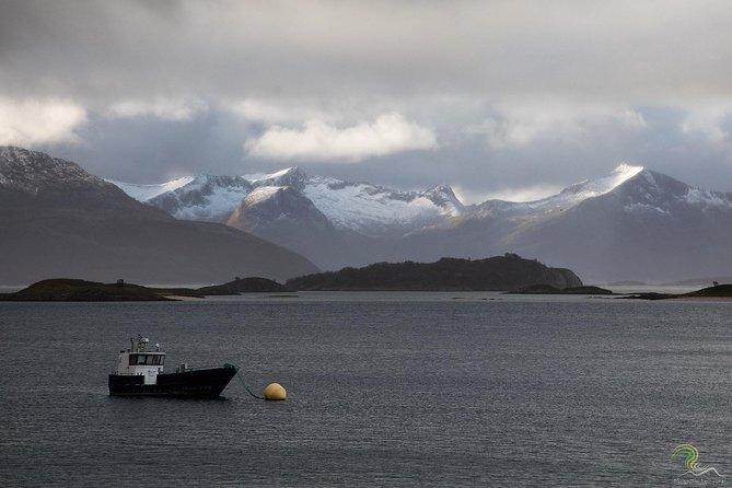 Fiordes noruegueses, incluindo fotos profissionais em Tromso, Tromso, NORUEGA