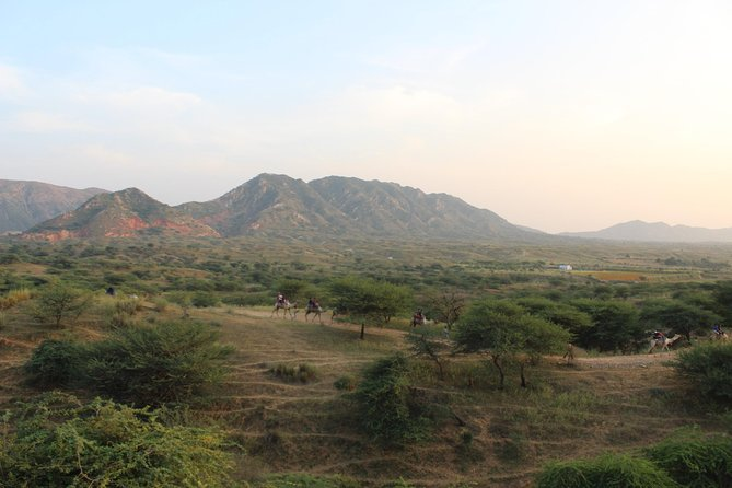 Pushkar is a place which is a combination of desert and hills <br>we will start this hiking from desert area and then hike to top of Aravli hills (oldest mountain range)<br>