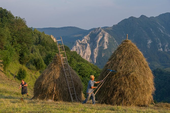 "Discover the unspoiled beauty of an authentic mountain village, mentioned in National Geographic's book ""Greatest Landscapes"", and then walk through nature and taste the fresh milk and traditional dishes of the Bran-Moieciu area. <br><br>This tour will help you experience the picturesque lifestyle of Transylvania and discover a small part of Romania's history and traditions."