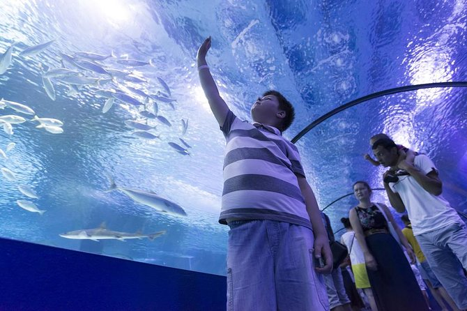 Antalya Aquarium admission with optional Antalya City Tour and Duden Waterfall, Belek, Turkey