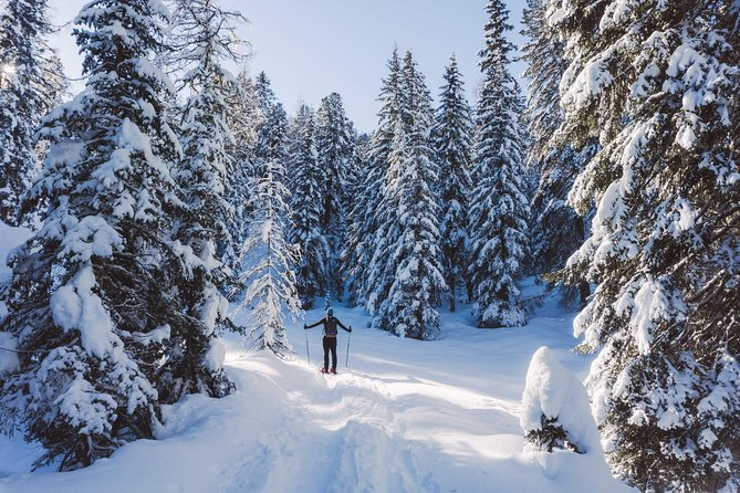 Looking for a nice excursion in the middle of the woods? Come with me on this snowshoeing program and explore the beautiful forest near Cortina d'Ampezzo (Dolomites).<br><br>On this opportunity, I would like to invite you to put your snowshoes on and go across a forest at the base of the Tofane. This is a mountain group that belongs to the Dolomites and is situated west of Cortina d'Ampezzo, in the heart of the Dolomites.