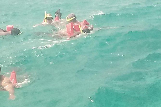 Falmouth Shore Excursion: Private Snorkel Tour, , JAMAICA