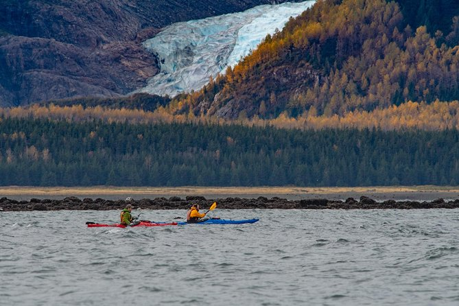 We offer small group guided guided kayak trips in the fjord around Haines, Alaska. Our guides are all ACA (American Canoe Association) certified instructors and undergo rigorous in house safety training along with Wilderness First Responder training and certification. In addition our guides have degrees in Zoology, Biology and Natural history and live in the community of Haines. This gives our guides the unique ability to share with you not only the natural beauty of the area but the unique lifestyle we live here in this little fishing town of Haines, at the northern most point of the inside passage.