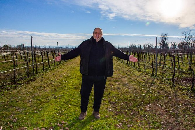 Sensorial wine tasting experience close to Parma and Reggio Emilia, Parma, ITALIA