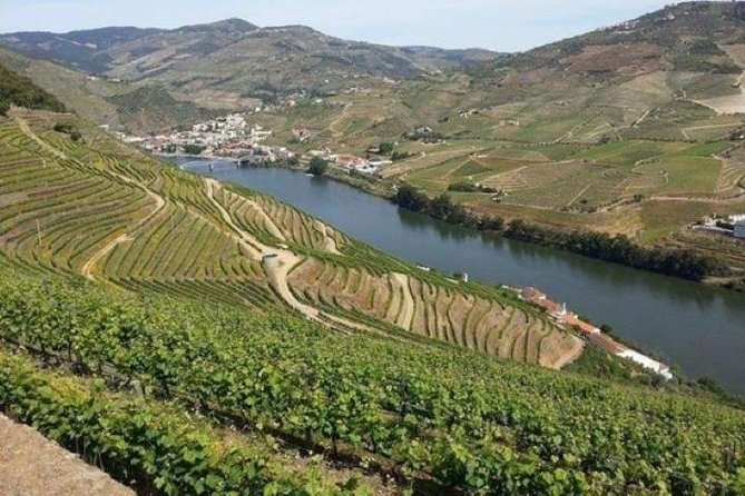 Pick up at the Hotel<br>Trip to Peso da Régua<br><br>Miradouro (Panoramic Sightseeing over the Douro River)<br><br>Visit to the historical train station of Pinhão<br><br>Visit to a typical Quinta (Wine Estate) with wine tasting<br><br>Lunch (Local Gastronomy)<br><br>Panoramic Sightseeing over the Douro river<br><br>Visit to the Côa Valley Art and Archaeology Museum<br><br>Visit to the Archaeological Park of the Côa Valley<br><br>Return to the Hotel