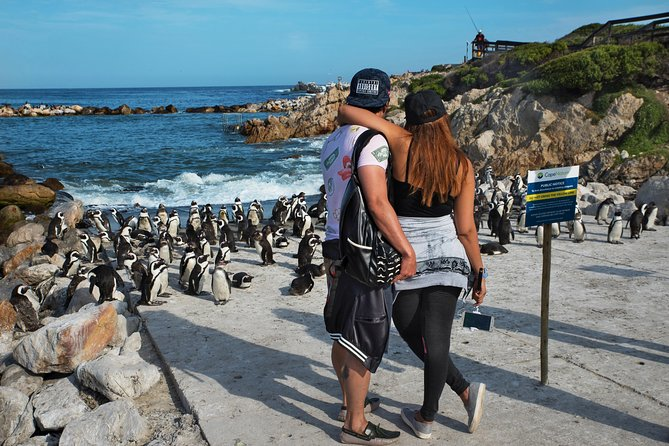 Join us on a Full Day Cape Peninsula Private Tour affording you the opportunity to see all the key sightseeing attractions that Cape Town has to offer. On this tour, guests will have the option to customize the tour to suit their requirements as they will have their own private tour guide in a private vehicle for themselves. <br><br>Highlights that can be experienced on this tour include the Bo-Kaap, the coastal Atlantic Seaboard passing through Bantry Bay, Clifton, Camps Bay, and Llandudno, Hout Bay (the Gateway to Seal Island), Chapman's Peak Drive, Cape Point Vineyard, Boulder's Penguins colony, Cape of Good Hope, Cape Point and Muizenberg.<br><br>This is truly one of the best ways to see some of the major highlights Cape Town has to offer in a customizable private tour.
