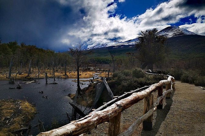 Afternoon at the National Park, Ushuaia, ARGENTINA