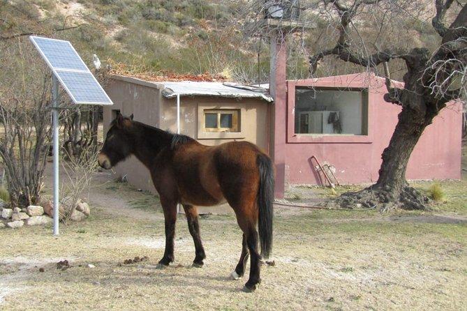Alojamiento Campestre al pie de la Cordillera de los Andes, Mendoza, ARGENTINA